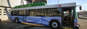 Rapid Compressed Natural Gas Bus